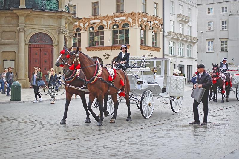 Bryczki w Krakowie
