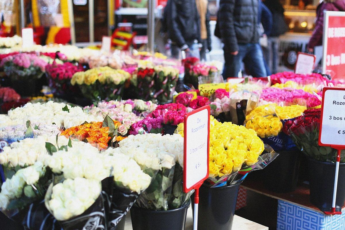 Kwiaty sprzedawane w Groningen