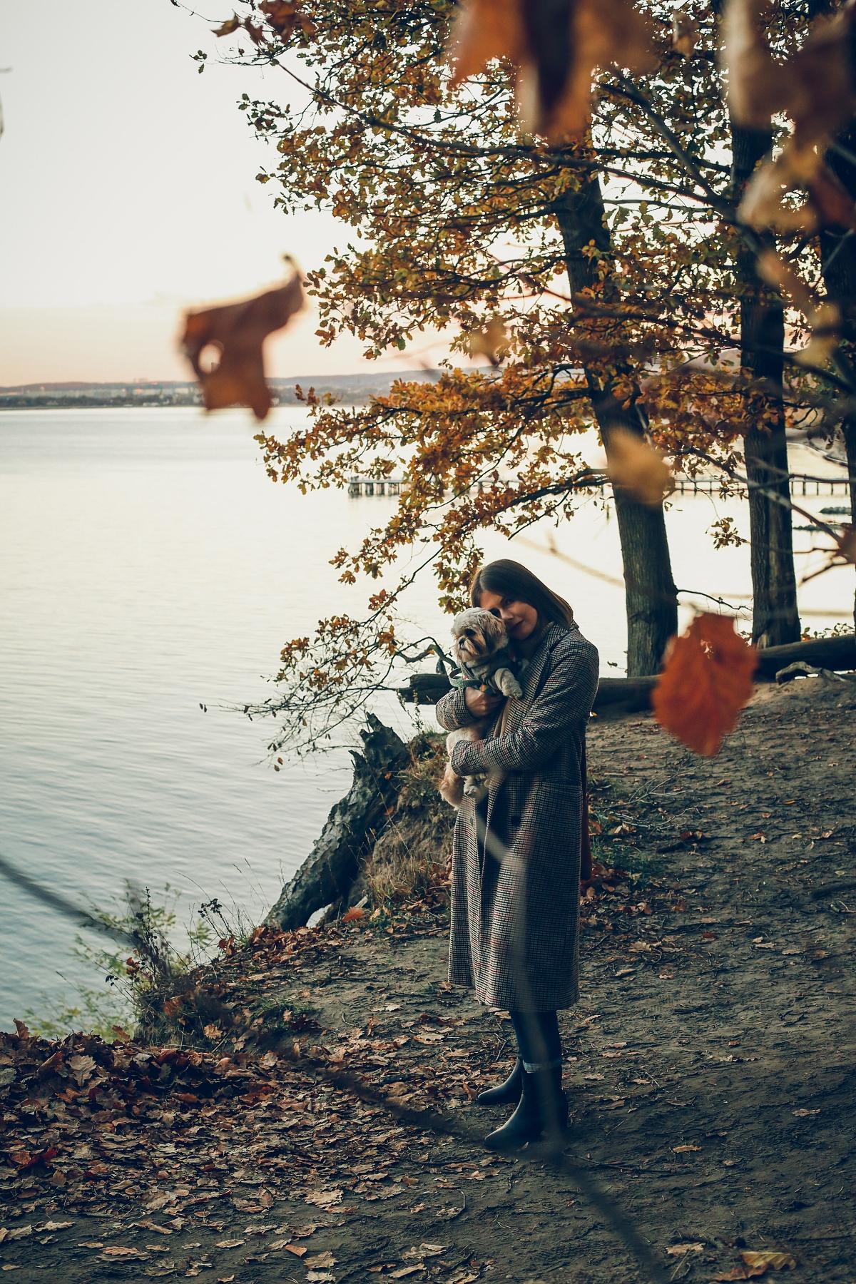 klif orłowski - jesienny look ootd - szczeniak shih tzu